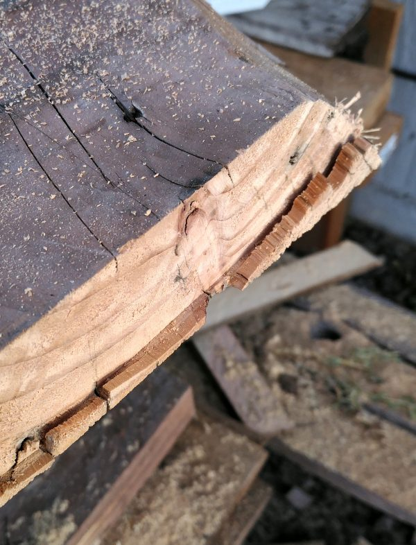 A closeup of the end of one of the thick slabs of wood; it's cut most of the way through, but there's still bits of wood hanging on along the bottom edge.