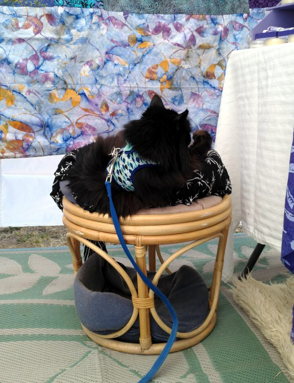 Hades is curled up in a cat bed atop a round wicker foot rest. Another cat bed is tucked inside the base. Behind Hades is a wall hanging made from mostly-blue batik fabric with leaves in purple & yellow.