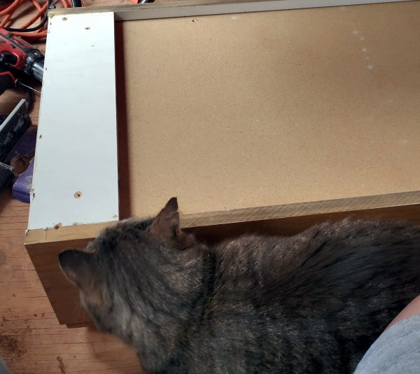 The pressboard cabinet is laying face-down on Tyrava's floor. Tom is curiously sniffing the end of it.