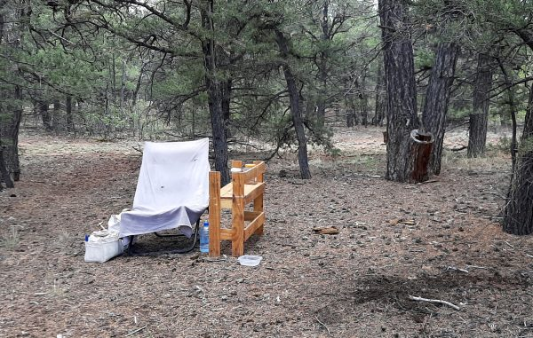 A small clearing, floored in pine needles & surrounded by low pinyon pines. A small wooden shelf & comfy folding chair sit in the middle.